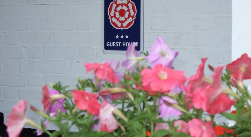 Martel Guest House